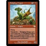 Fledgling Dragon [JUD]