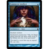 Evanescent Intellect [BNG]