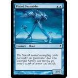 Plated Seastrider [CNS]