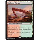 Sheltered Thicket [AKH]