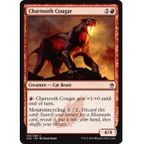 Chartooth Cougar [A25]