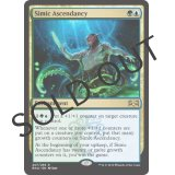 Simic Ascendancy [RNA]